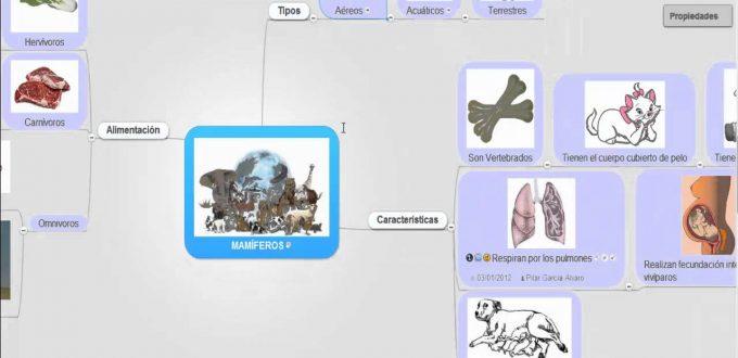 Videotutorial Para Crear Mapas Mentales con MindMeister